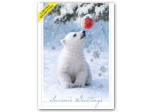 Beary Amused Holiday Cards